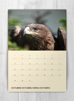 Calendario solidario octubre